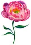 Schöne Blumen für Ihr Design stock abbildung