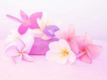 Schöne Blumen gemacht mit bunten Filtern Stockfotos