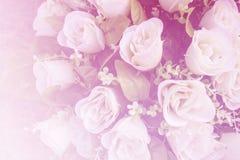 Schöne Blumen gemacht mit Farbfiltern Stockfotos