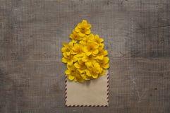 Schöne Blumen im alten Umschlag Lizenzfreies Stockfoto