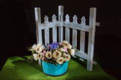 Schöne Blumen im blauen Topf Lizenzfreies Stockfoto