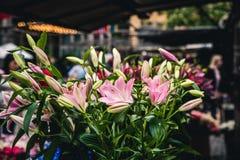 Schöne Blumen können am Sommer Haymarket auf Lager gekauft werden lizenzfreie stockfotografie