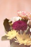 Schöne Blumen mit gefiltertem Hintergrund der Weichzeichnung Farbe Stockfotografie