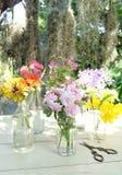 Schöne Blumen vieler Farben Stockbild