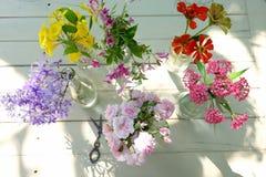 Schöne Blumen vieler Farben Stockfotografie