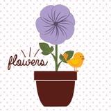 Schöne Blumenauslegung Stockfoto