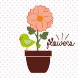 Schöne Blumenauslegung Stockfotos