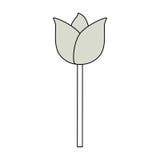 Schöne Blumengartenarbeit Lizenzfreies Stockbild
