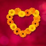 Schöne Blumengrußkarte Lizenzfreie Stockfotos
