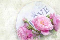 Schöne Blumenkarte mit Liebe für Sie Leichte Rosen des wilden Rosas mit Geschenkbox Stockfotos