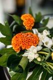Schöne Blumenstraußblume Lizenzfreies Stockfoto