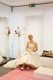 Schöne Braut. Lizenzfreies Stockbild