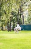 Schöne Braut, die ein Pferd an ihrem Hochzeitstag reitet stockfotos