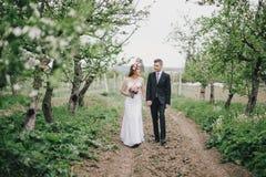 Schöne Braut in einem Hochzeitskleid mit Blumenstrauß und Rosen winden die Aufstellung mit tragendem Hochzeitsanzug des Bräutigam Stockbilder