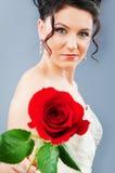 Schöne Braut mit stieg in Studio Lizenzfreie Stockbilder