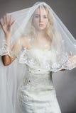 Schöne Brautfrau im Hochzeitskleid und -schleier lizenzfreie stockbilder