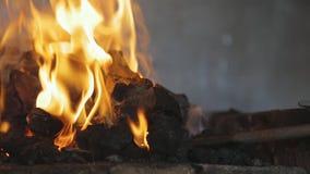 Schöne brennende gelbe Flammenschwarzkohle im Ofen stock footage