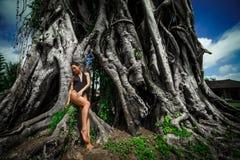Schöne Brunettefrau mit perfektem Körper im Badeanzug nahe dem großen Baum im Bali Lizenzfreies Stockfoto