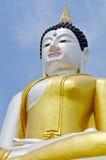 Schöne Buddha-Statue mit blauem Himmel Stockbild