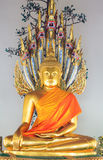 Schöne Buddha-Statue mit Schlangen Stockfoto