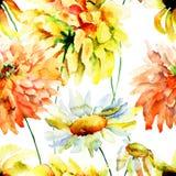 Schöne Chrysanthemen- und Kamillenblumen Stockfotografie