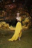 Schöne Dame im feenhaften Wald Stockfotos