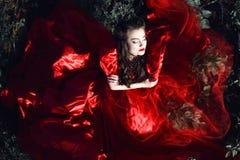 Schöne Dame mit perfektem bilden und die Frisur, die das rote Ballsaalkleid der luxuriösen Seide trägt, das auf dem Gebiet mit ge stockfoto