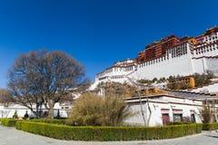 Schöne Ecke mit großem Baum bei Potala-Palast, Tibet Lizenzfreies Stockbild