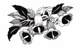 Schöne einfarbige, Schwarzweiss-Blume lokalisiert Von Hand gezeichnete Tiefenlinieanschläge Lizenzfreie Stockbilder