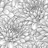 Schöne einfarbige Schwarzweiss-Blumen und Blätter vektor abbildung