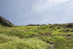 Schöne Einstellung des Weges Gebirgsumgeben durch enorme Hügel Lizenzfreie Stockfotografie