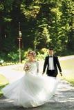 Schöne elegante blonde Braut im weißen Kleid und im hübschen Raum Lizenzfreies Stockbild