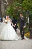 Schöne elegante Hochzeitspaare der Junge recht Stockbild