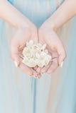 Schöne empfindliche Hände eines Mädchens mit Jasmin blüht in ihren Händen, Art der schönen Kunst Stockbilder