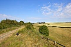 Schöne englische Sommerlandschaft mit Naturlehrpfad- und Patchworkfeldern Lizenzfreies Stockfoto