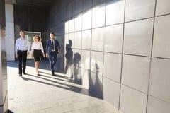 Schöne erfolgreiche Leute, zwei Kerle und Mädchen, junges businessme lizenzfreie stockfotografie