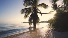 Schöne exotische Strandlandschaft bei Sonnenaufgang, tropische Feiertage auf dem Meer stock footage