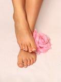Schöne Füße mit französischem Nagel pedicure Stockfoto
