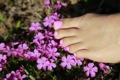 Schöne Füße mit rosa Pediküre Lizenzfreie Stockfotografie