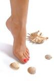 Schöne Füße, vollkommenes Badekurort pedicure, Seeshell Stockfoto
