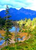 Schöne Fall-Farben in Mt-Bäcker 5 Stockfoto
