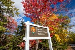 Schöne Fallfarben des Acadia-Nationalparks in Maine Stockbild