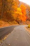 Schöne Fallfarben durch die Landstraße. Stockfoto