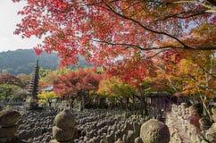 Schöne Falllandschaft um Kyoto Stockfotos