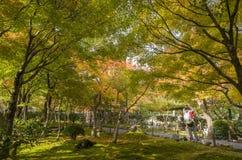 Schöne Falllandschaft um Kyoto Lizenzfreies Stockfoto