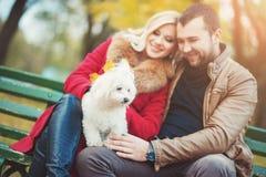 Schöne Familienpaare mit dem weißen netten maltesischen Hund, der Zeit im Herbstpark verbringt Stockfotografie