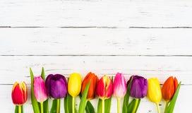 Schöne farbige Tulpen auf weißem hölzernem Hintergrund mit Kopienraum Lizenzfreie Stockbilder