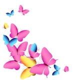 Schöne Farbschmetterlinge, lokalisiert auf einem Weiß Lizenzfreie Stockfotos