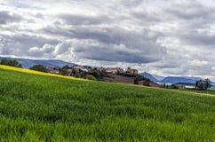 Schöne Felder Lizenzfreies Stockfoto