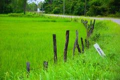 Schöne Felder Lizenzfreies Stockbild